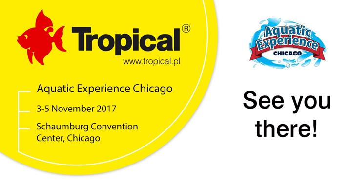 Tropical na targach Aquatic Experience Chicago