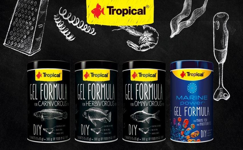 Tropical Gel Formula - nowa Linia pokarmów