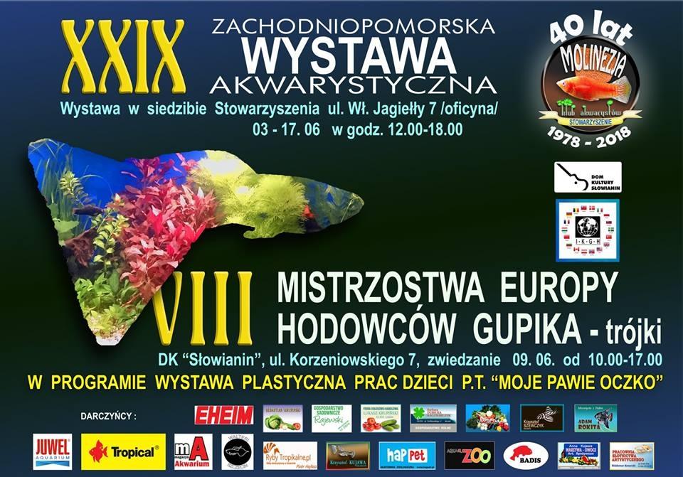Tropical na VIII Mistrzostwach Europy Hodowców Gupika