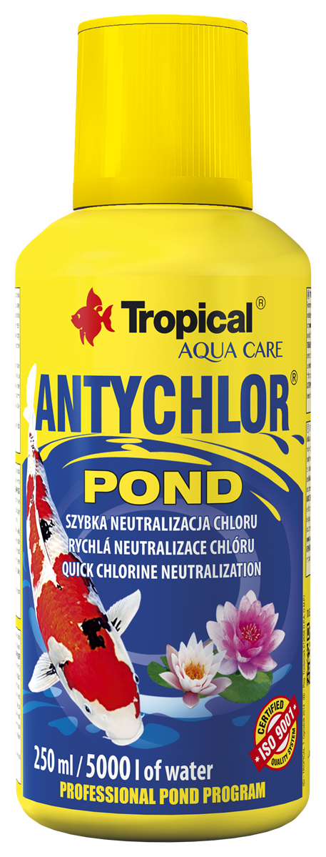ANTYCHLOR POND