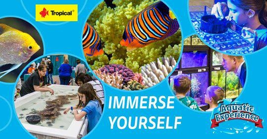 Tropical na targach Aquatic Experience in Secaucus in New Jersey!