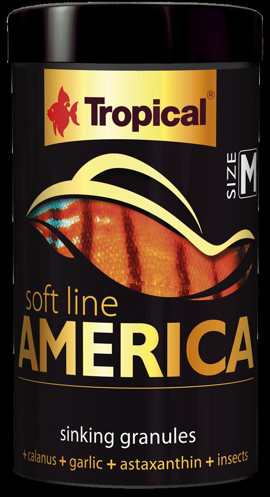 America Soft Line M