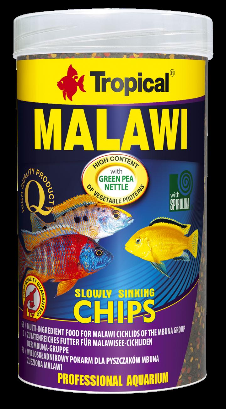 MALAWI CHIPS