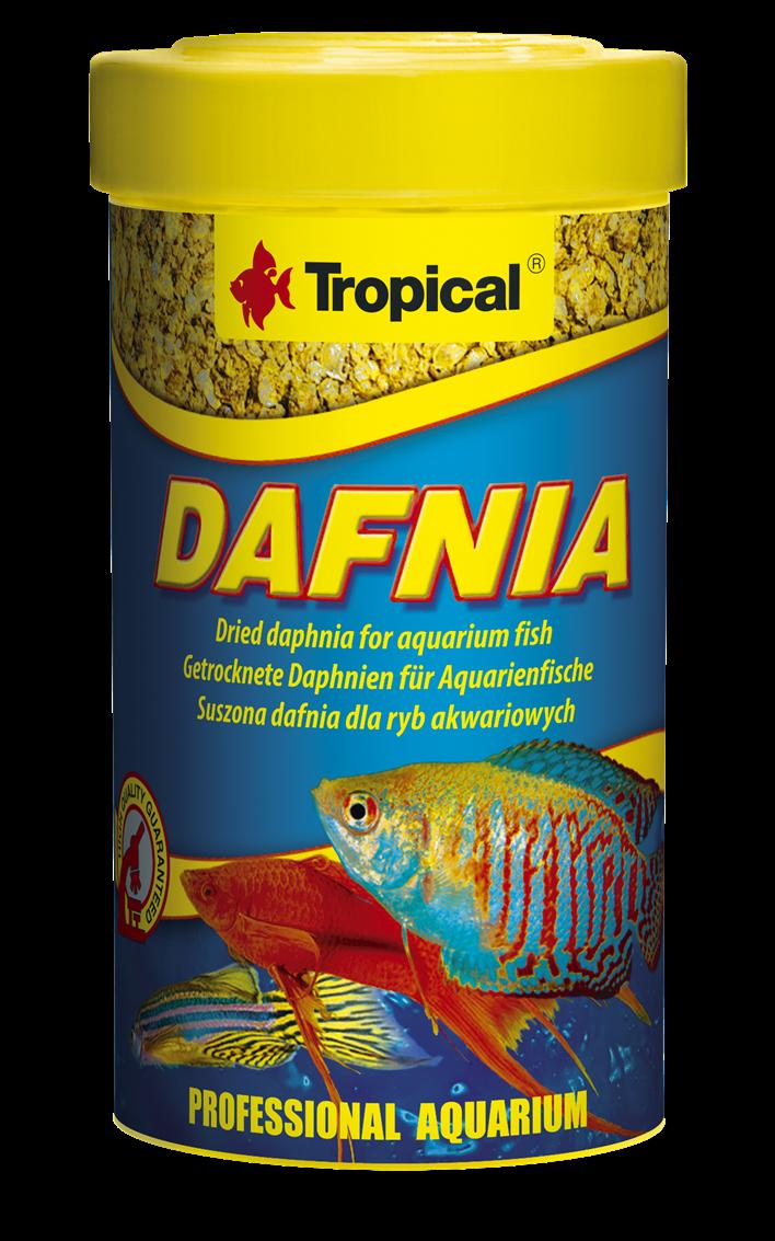 Dafnia