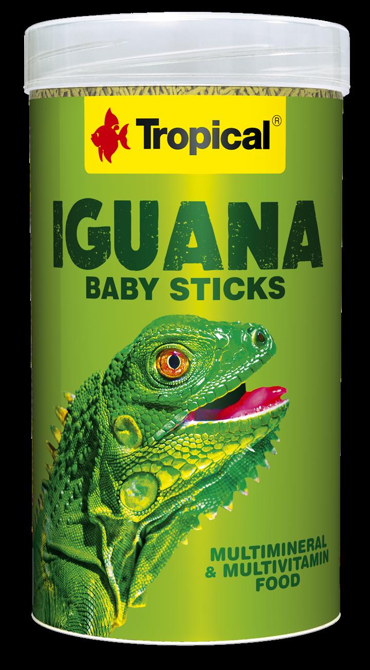 IGUANA BABY STICKS
