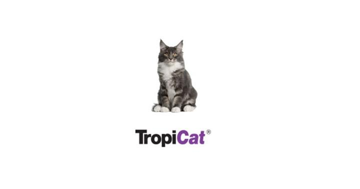 Pokarmy dla kotów - Linia produktów