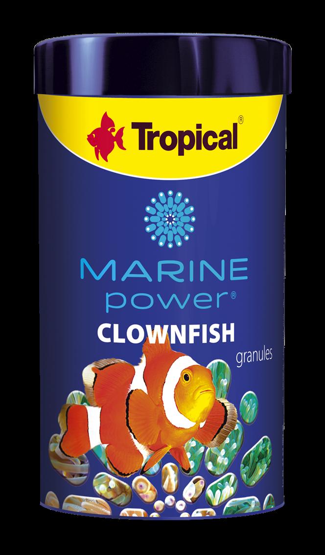 Marine Power Clownfish