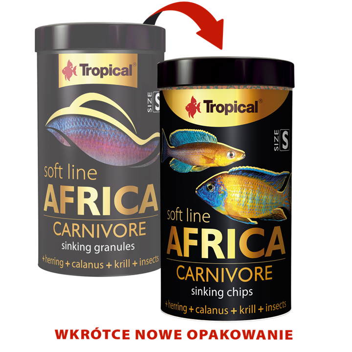 Africa Carnivore Size S