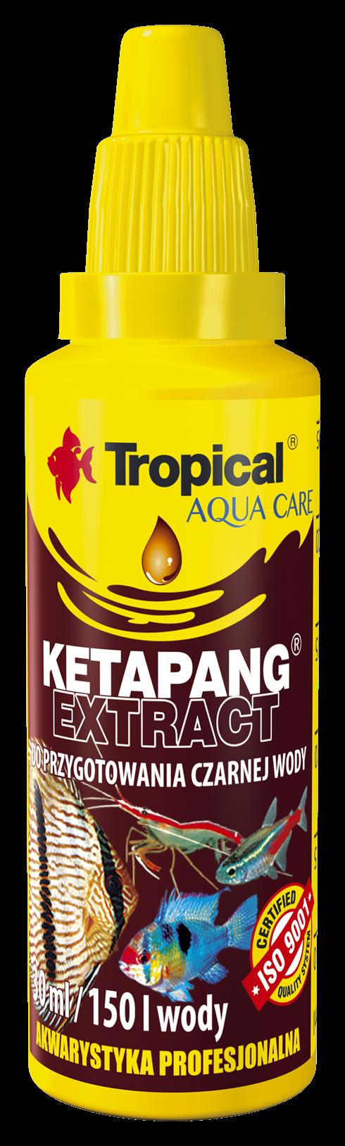 Ketapang Extract