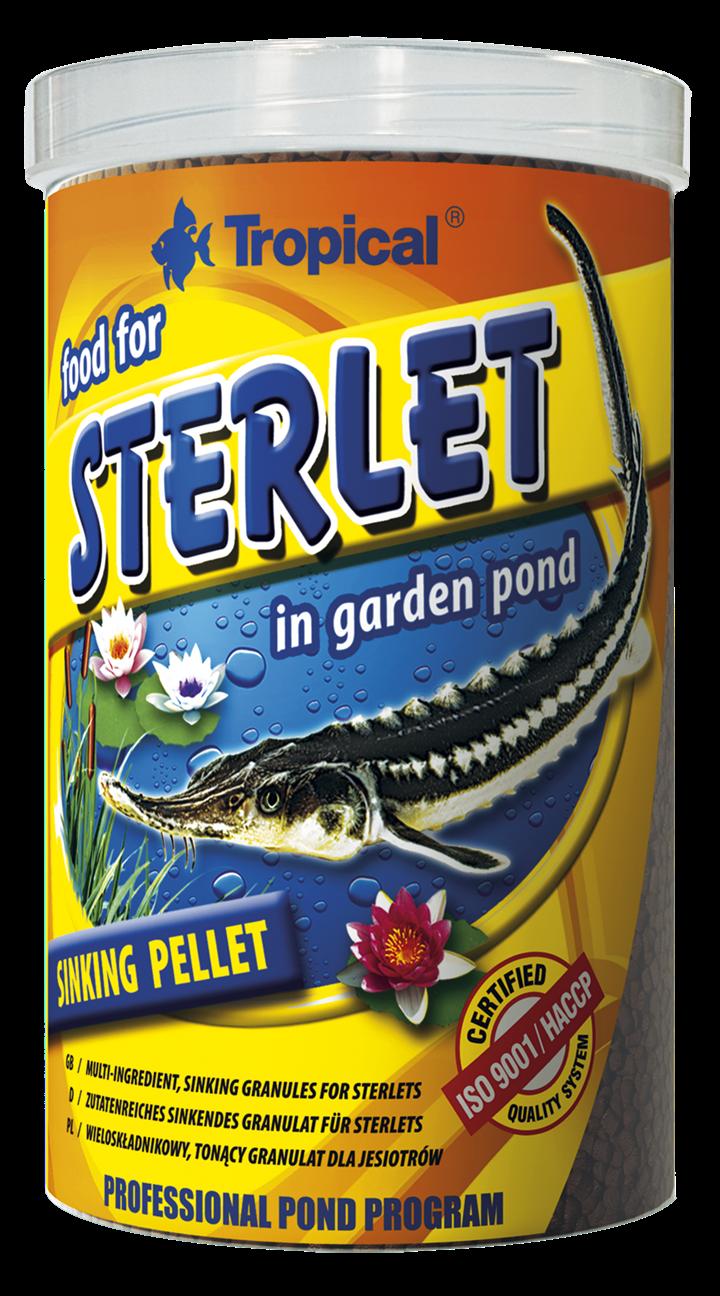 Food For Sterlet