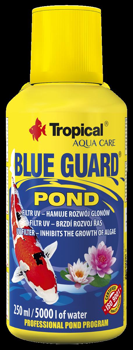 Blue Guard Pond
