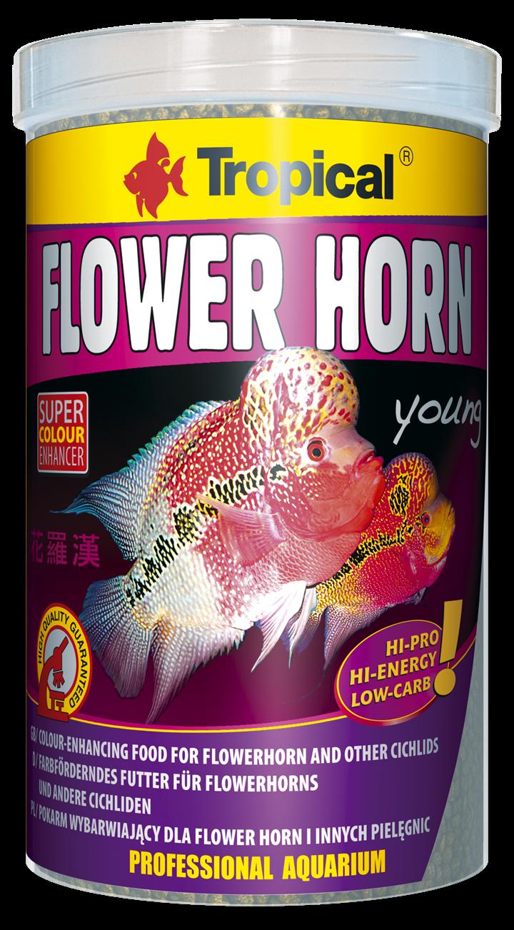 Flower Horn Young Pellet