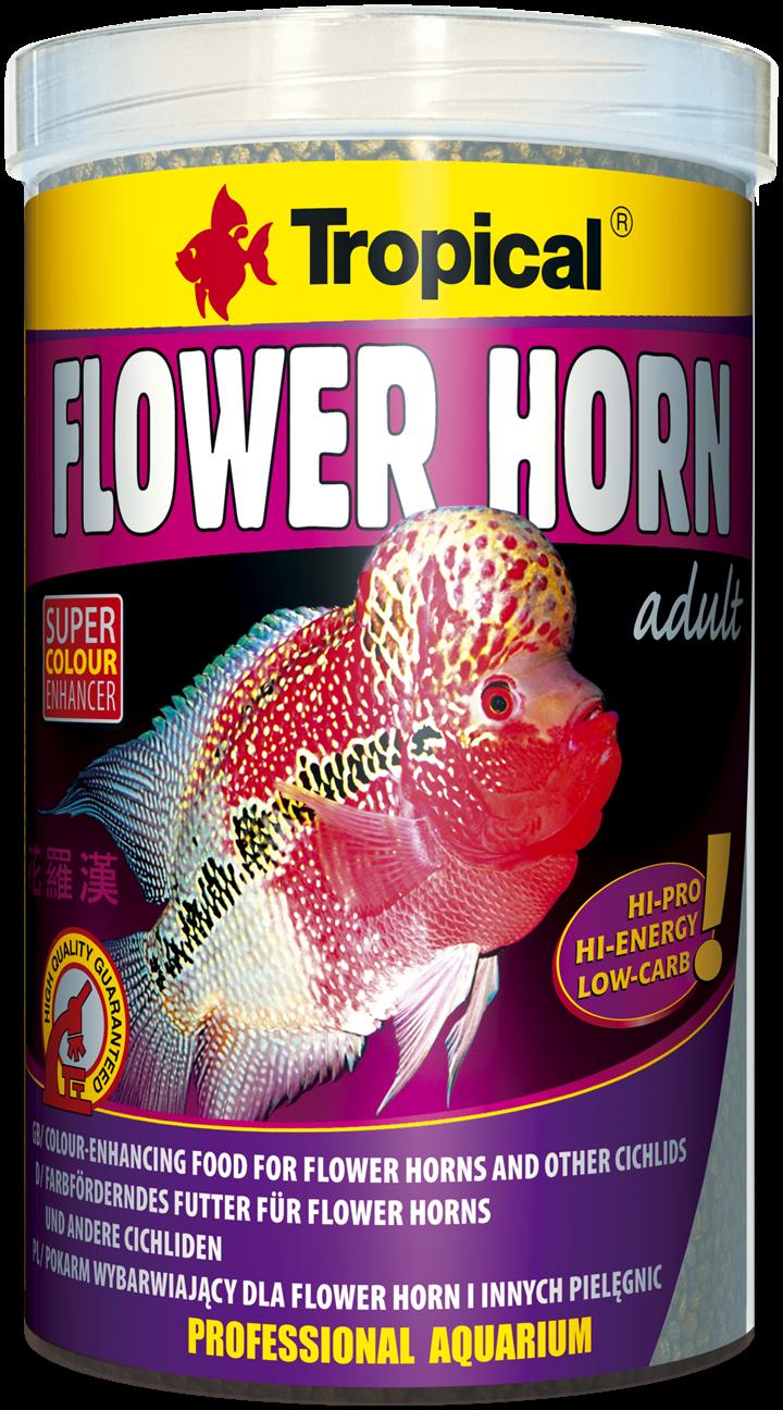 Flower Horn Adult Pellet