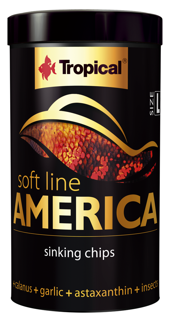 America Soft Line L
