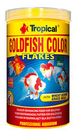 GOLDFISH COLOR