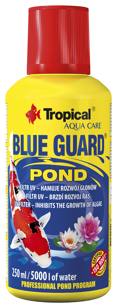 BLUE GUARD POND